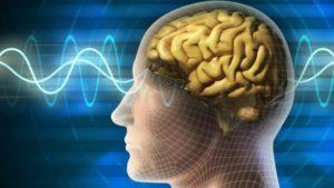 Temporal Lob Epilepsi hastalığı nedir? TLE hastalığı nasıl tanımlanmaktadır?